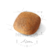 ROYAL CANIN Bichon Frise Adult 500 g