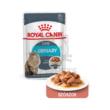 ROYAL CANIN Urinary Care alutasakos eledel macskák részére